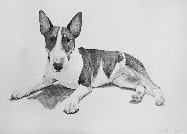 Bull terrier Pencils, size A3