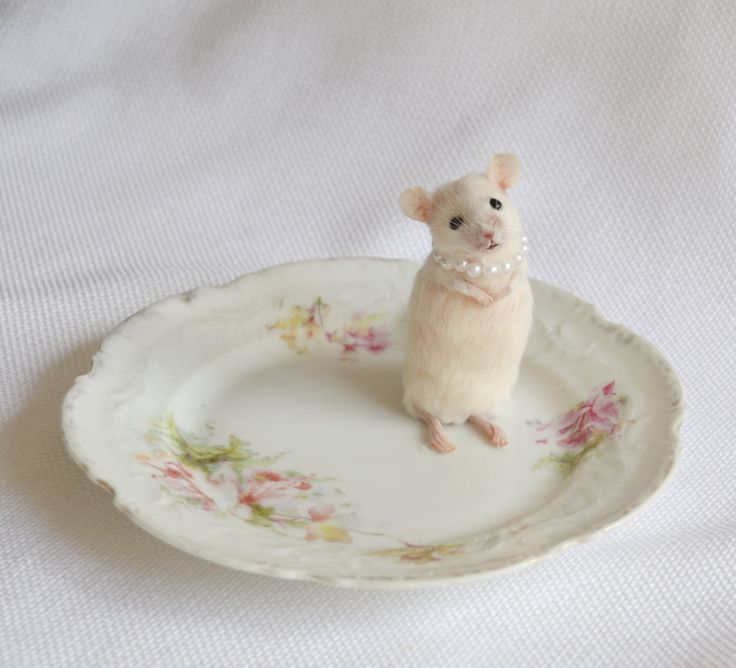 Taxidermy mouse on pretty dish. by NimbleMatters on Etsy