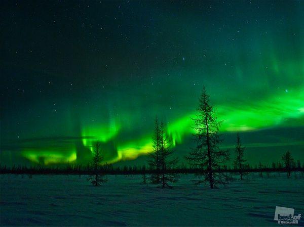Northern lights  Игорь Нелинов