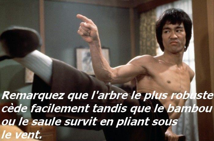 Bruce Lee était un spécialiste en arts martiaux, un artiste et un acteur, mais il était également connu comme étant un philosophe.