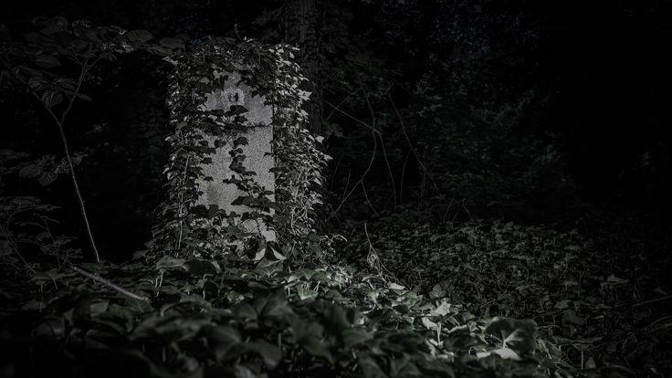 Jeden z několika posledních náhrobků na bohnickém hřbitově bláznů. One of last remaining gravestones on the medmen's hospital cemetery in Bohnice.