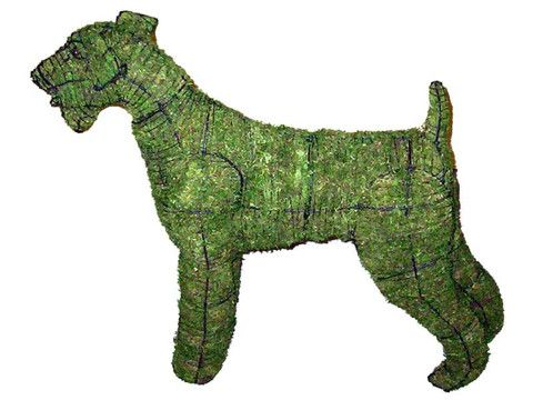 18 Best Images About Dog Topiary On Pinterest Chihuahuas