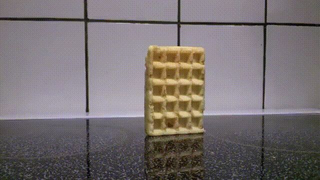 Waffle falling over in HD