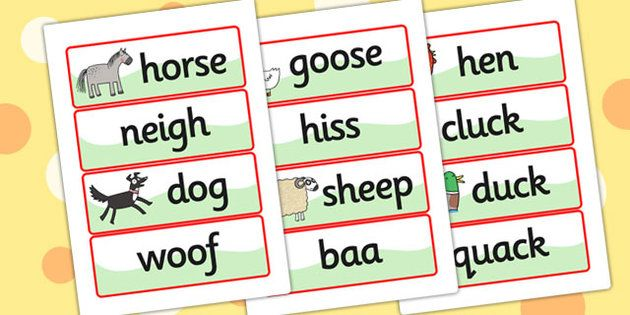What the Ladybird Heard Word Cards