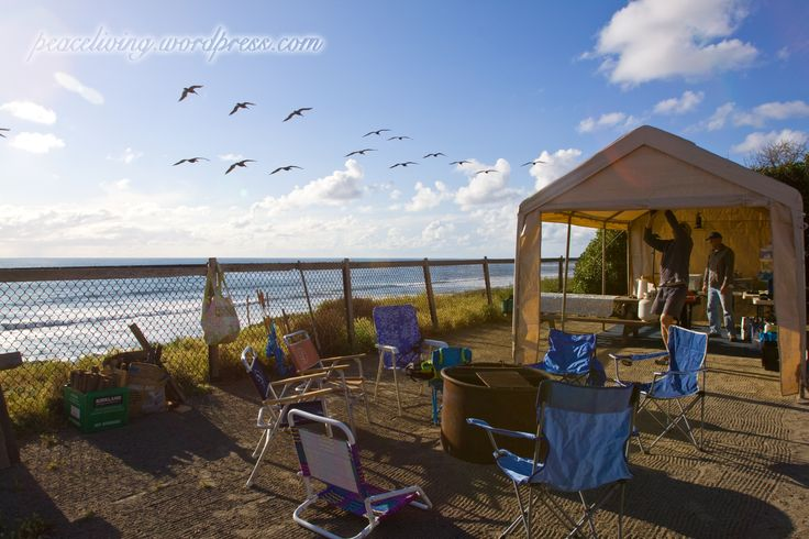 Families Camping On the Beach