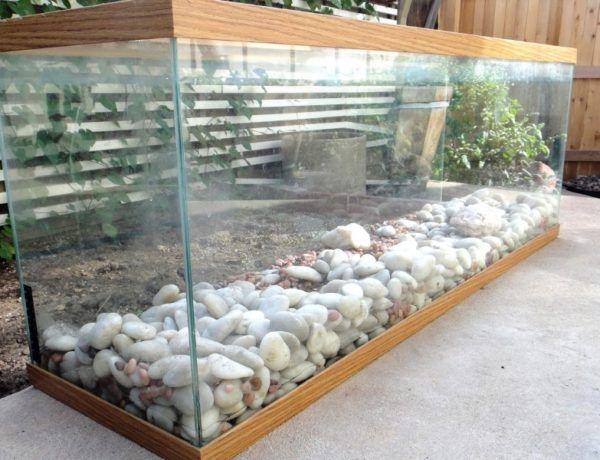 7 Small Garden or Backyard Aquarium Ideas Will Blow Your Mind