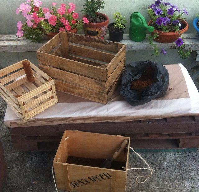 Jardín orgánico en mi azotea , después subiré fotos lo prometo ;)