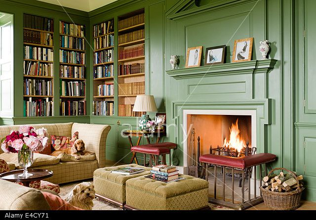 Calke Green Walls And Bookcase Haircuts Pinterest