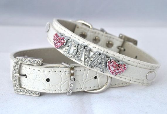 Coco Chanel Dog Collar For Sale