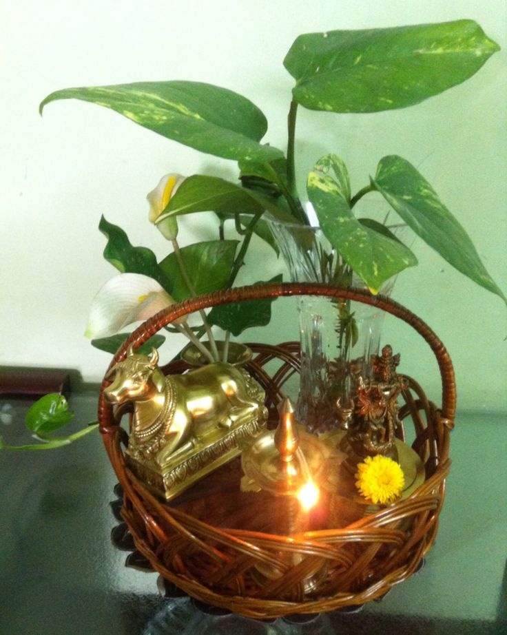 Beautiful cane basket with brass Lepakshi Nandi, Krishna and big leaves money plant