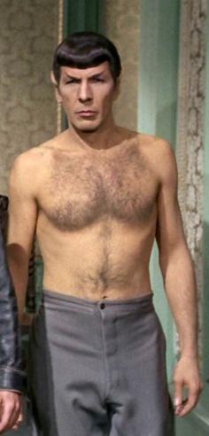 Leonard Nimoy ~ Spock