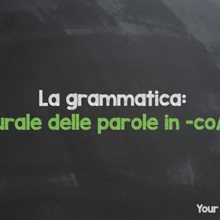 Learn Italian grammar: plural form of the Italian words ending in -co /-go