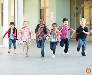 Children's Immunity: Support for School and Pre-school - School and pre-school can be a whole new ball game of new people, new bugs to share and new viruses for our kids' immune systems to get to know.