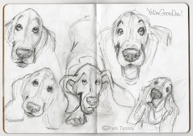 Follow Pam Tanzey's Sketchbook Project