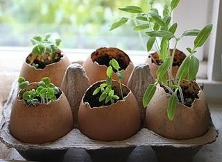 Eggshell flower pots! Such a kid-friendly craft. #NRDCBioGems #earthday