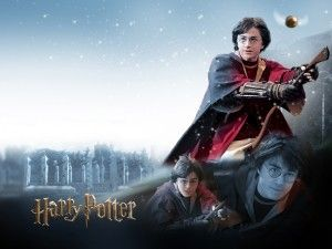 Quidditch – Train for it and Burn Major Calories like Harry Potter: Quidditch Training, Harry Harry, Harry Potter Wallpaper, Harry Freakin, Freakin Potter, Favorite Movies, Stone, Potter Wallpapers, Hp Wallpaper Jpg 1024 768