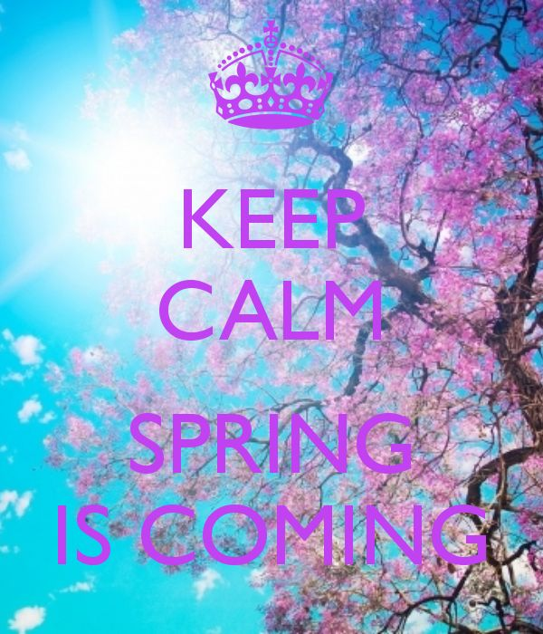 I don't know how much longer I can keep calm! Spring needs to come now!! Spring does NOT mean snow!! (Just clarifying)