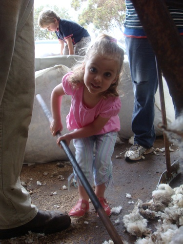 Grace-fully working the wool