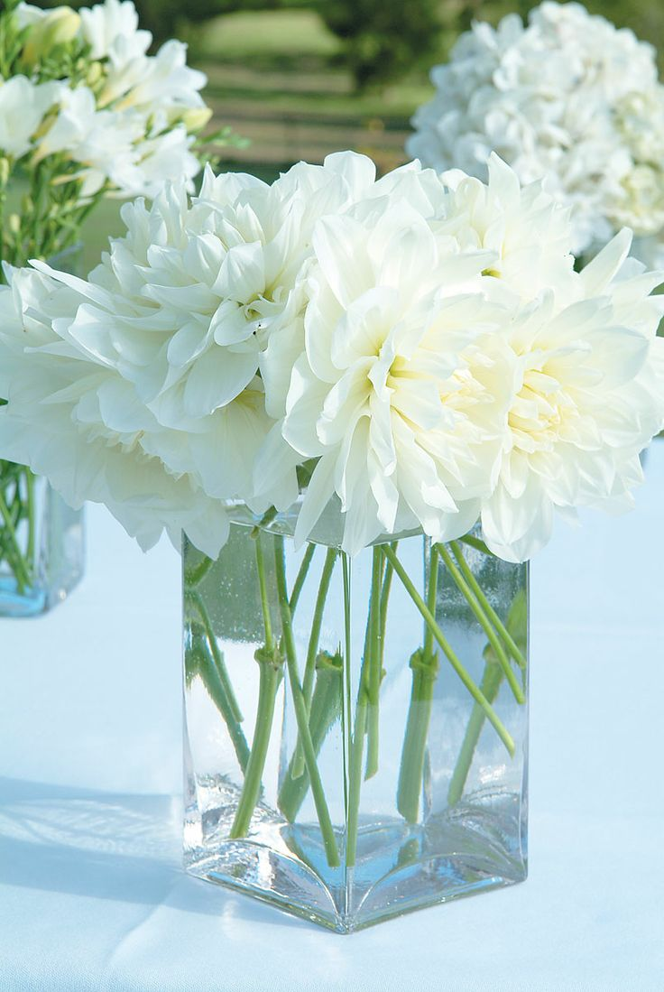 SIMPLE Amp PRETTY Simple Glass Rectangular Vases Of White Flowers Decorate The Wedding Ceremony