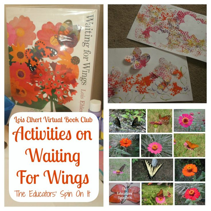 Waiting For Wings {Lois Ehlert Virtual Book Club} - The Educators' Spin On It