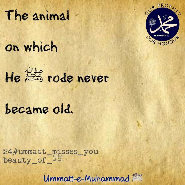 Ummatt-e-Muhammad ﷺ#24ummatt_misses_u-beauty_of_ﷺ