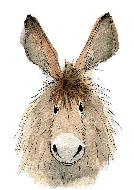 Limited edition print – Dennis the donkey, donkey print, donkey art
