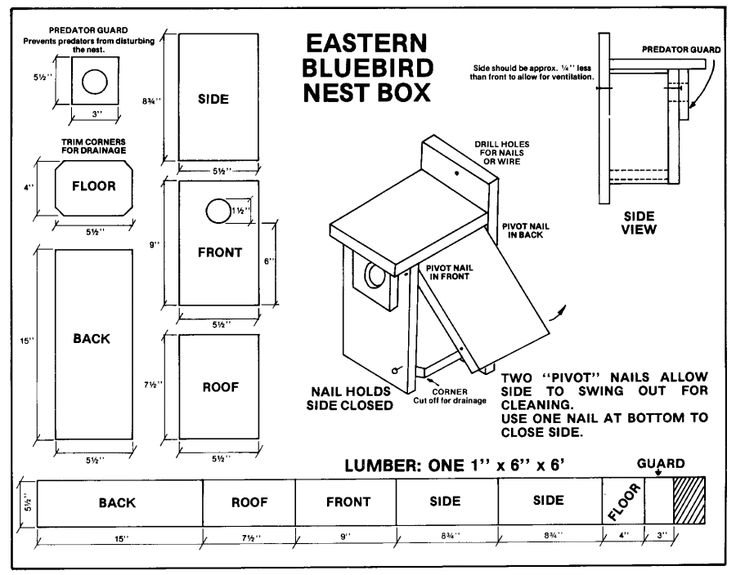 Going to be building several bluebird nesting boxes to help keep the bugs out of my garden.