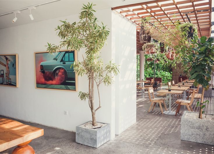 Minimalist design blends with a jungle aesthetic at The Slow, a new multifaceted luxury accomodation experience on the Canggu coastline in Bali.