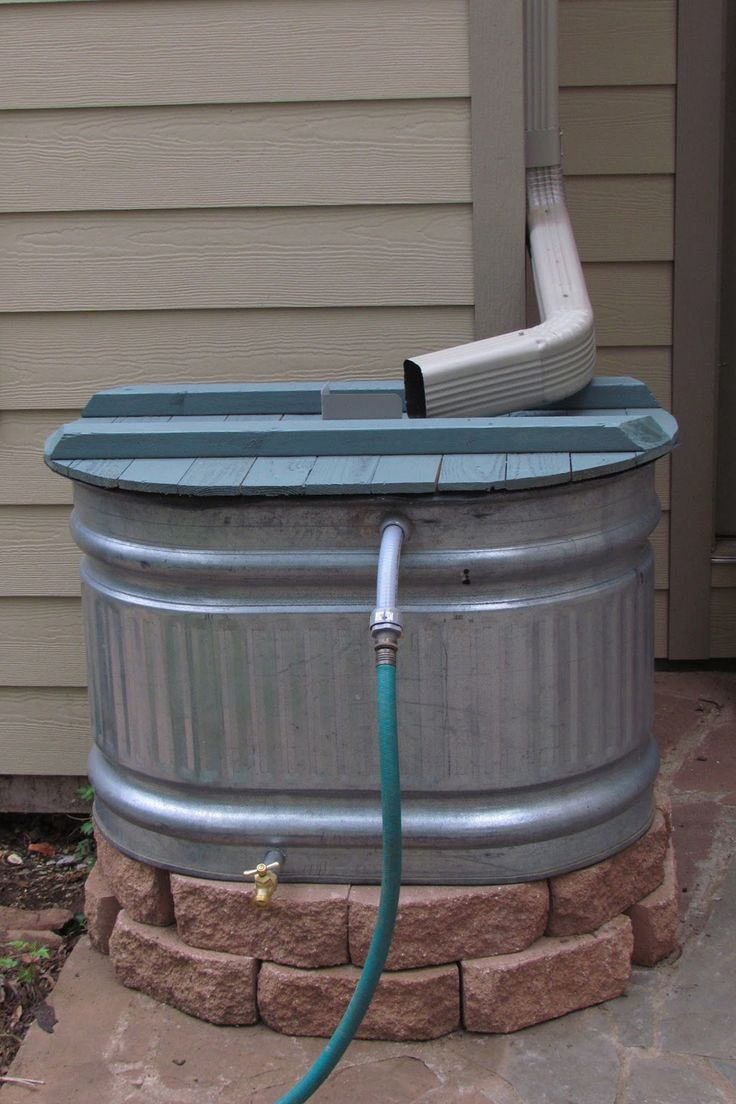 RAIN BARREL Reduce your water bills by installing a barrel to collect rain water to douse your garden.