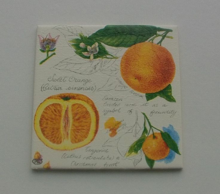 "Bild Geschenk Muttertag Geldgeschenk Mitbringsel ""Sweet Orange"""