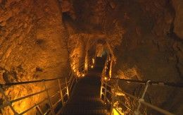 Canaanite Fortress Discovered in the City of David