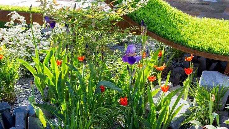 The World Vision Garden 2