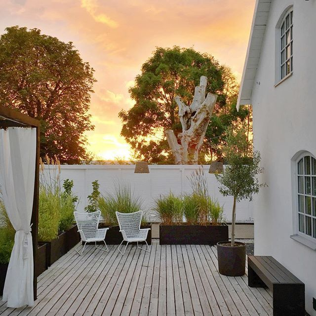 Garden sunset #myhome #mygarden #interior4all #interior123 #inspo4all #inspo2you #inspohome #gardendesign #gardenlife