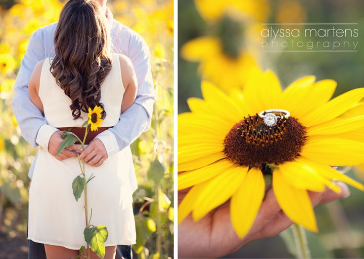 Sunflower Field Engagement Photos I www.alyssamartensphoto.com