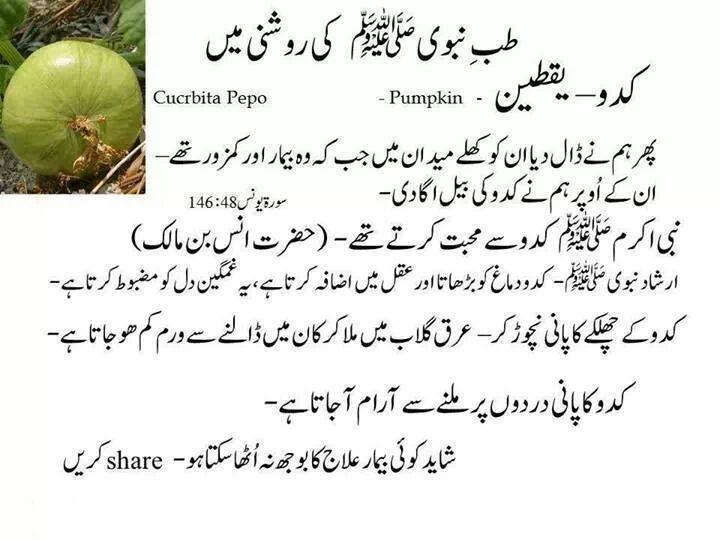 camel essay in urdu Camel essay in urdu camel in islam paragraph on camel bachon ke liye camel  par mazmoon for kids allah ta'ala ne oont ko aisa hairat angez aur itna farma.