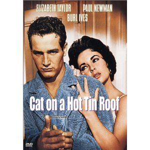 Paul Newman and Elizabeth Taylor: Cats, Hollywood Movies Tv, Brooks, Favorite Movies, Movie Folder, Classic Movies, Movie Freak