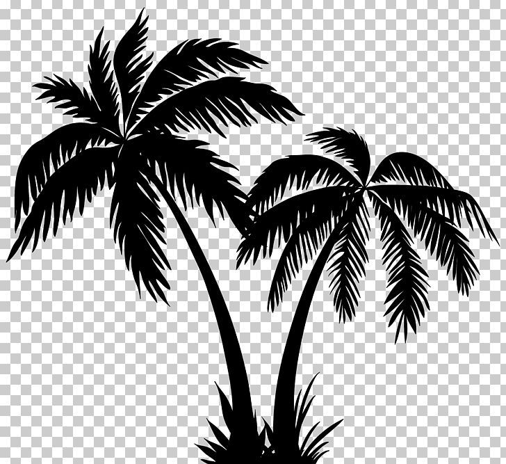 Silhouette Arecaceae Png Arecaceae Arecales Black And White Borassus Flabellifer Clip Art Palm Tree Drawing Palm Tree Artwork Coconut Tree Drawing
