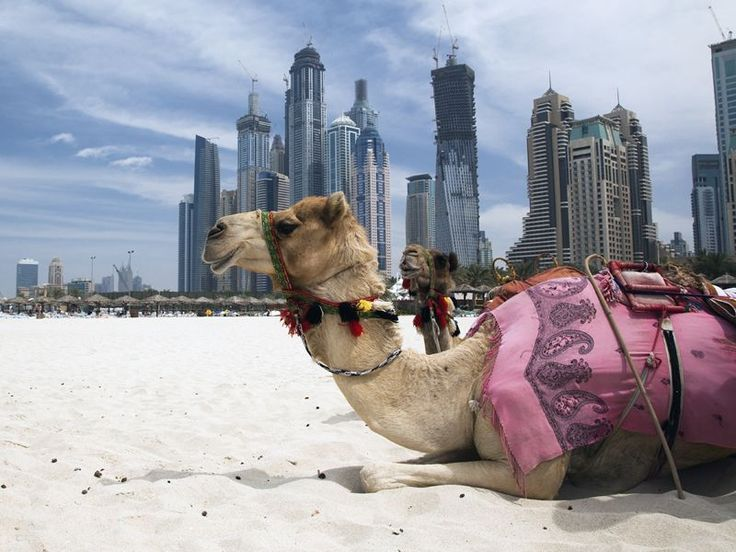 Top 10 things to do in Dubai | Middle East travel inspiration