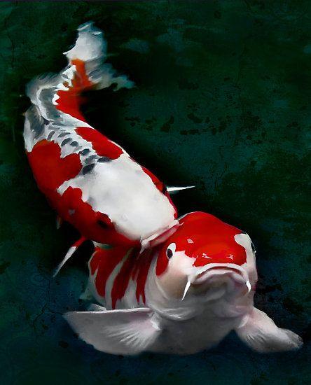 Kissing Koi | Tattoo Ideas & Inspiration - Japanese Art | Japanese carps, Koi fish