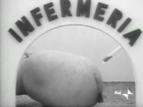 Pippo, ippopotamone Lines 1972
