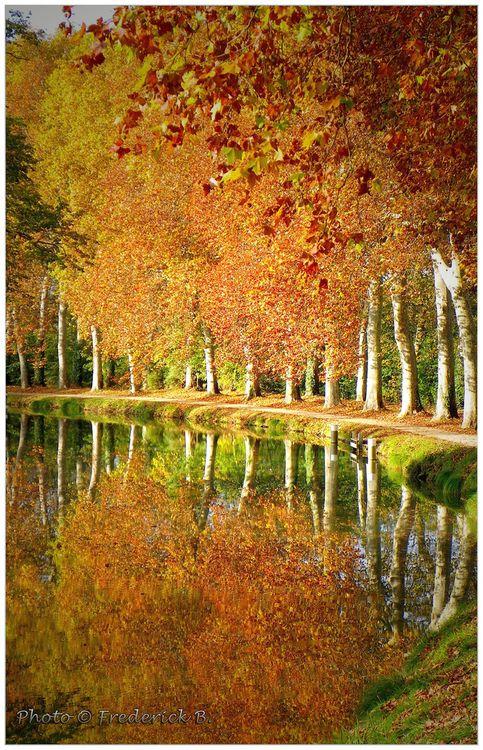 Canal du Midi - FRANCE (by frederick-b)