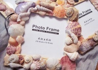257 Best Seashell Decor Images On Pinterest Shells