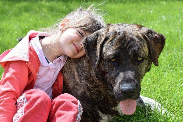 Children and dogs. Sometimes they get along brilliantly.