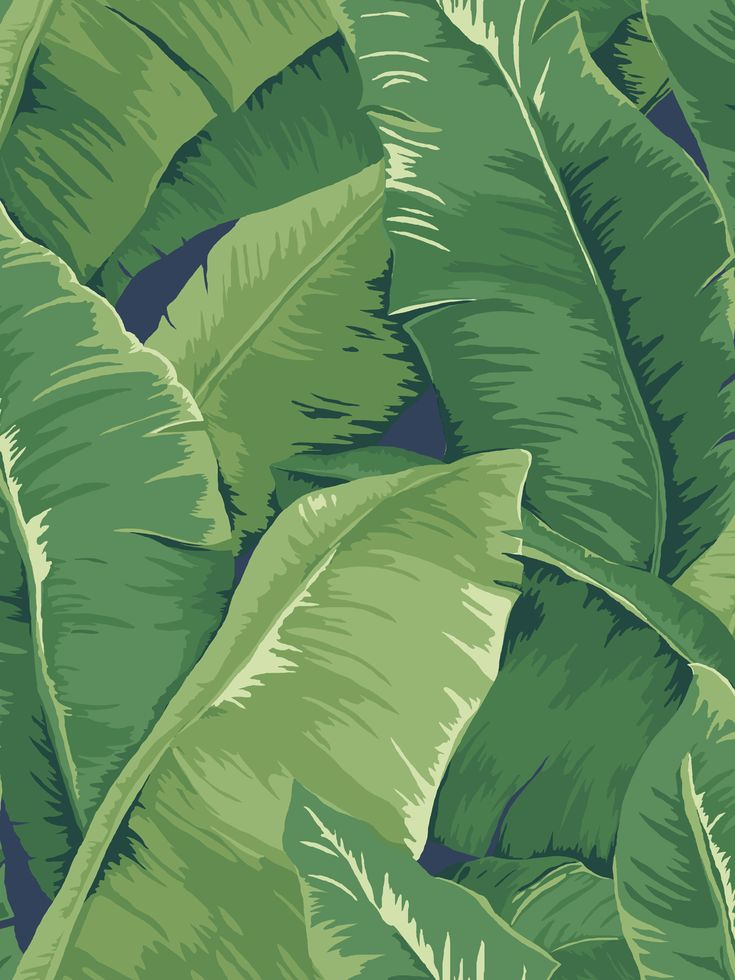 Trending for 2015 are tropical leaves but if you really know about style, banana leaves are always in fashion....and a classic design! The Banana leaf has