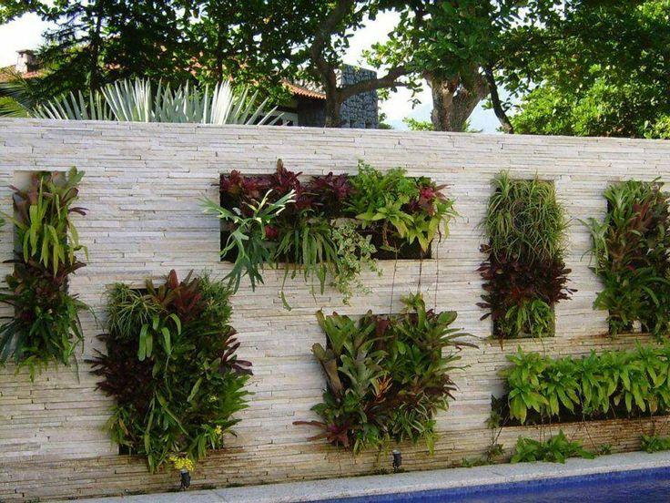 M s de 1000 ideas sobre muros verdes en pinterest - Plantas para jardines verticales ...