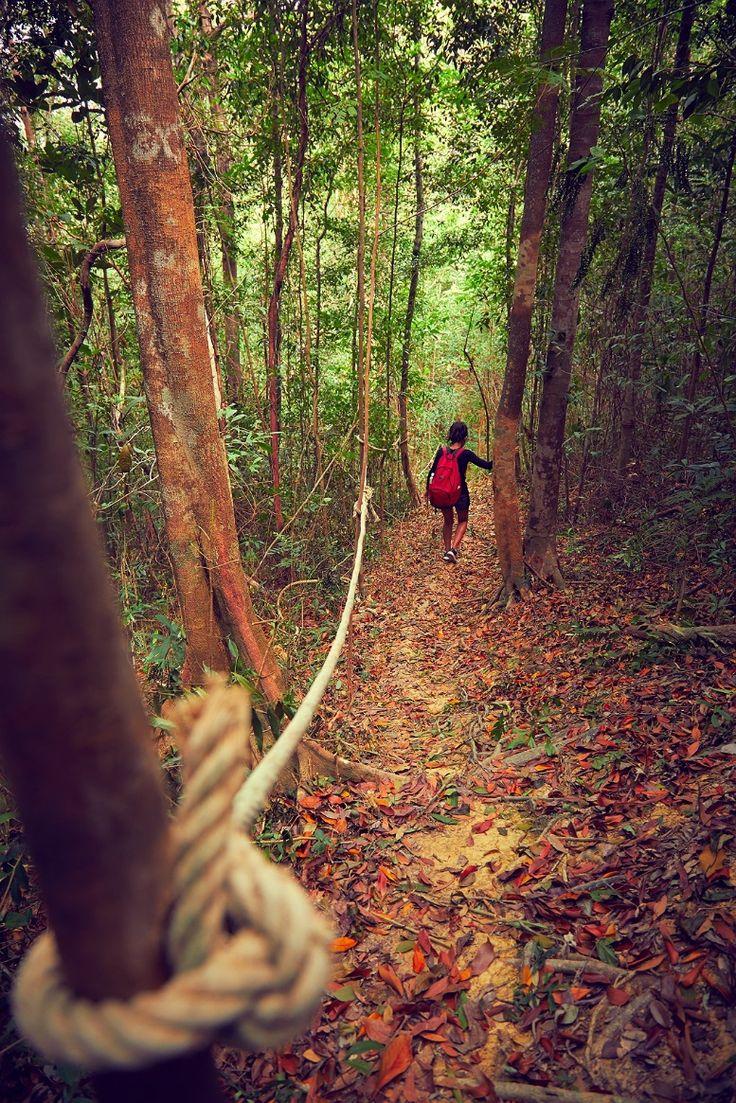 Where hide & seek gets a whole new meaning.  #Vivanta #VivantaByTaj #Coorg #Madikeri #Adventure #Holiday #Rainforest