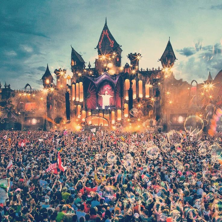 Tomorrowland 2015 - Visit Amy FM | www.amyfm.nz