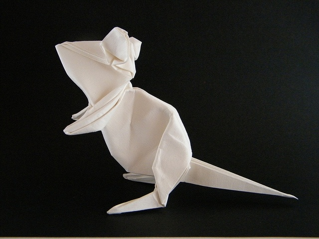 Mouse origami!