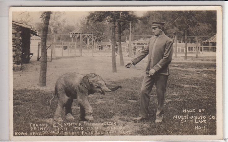 1295 best utah postcards images on pinterest places to for Heritage motors brigham city utah