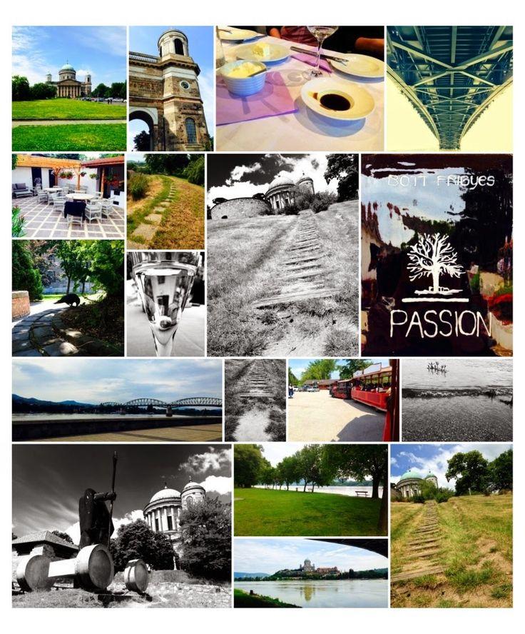BELA 2014 June #slovakia #bottfrici #wine #kenu #esztergom #parkany